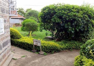 Kolping Organization Of Kenya 102