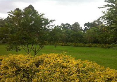 Kolping Organization Of Kenya 4