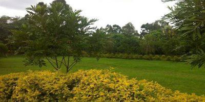 Kolping Organization Of Kenya 72